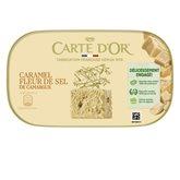 Carte d'Or Carte d'or caramel beurre salé 480g